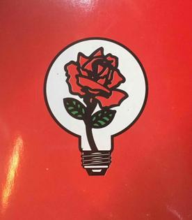 """""""Rose light bulb"""""""