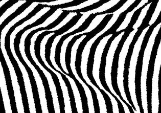 Stripes_KW_News.jpg
