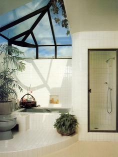 bathroom-with-a-skylight-and-indoor-plants.jpg