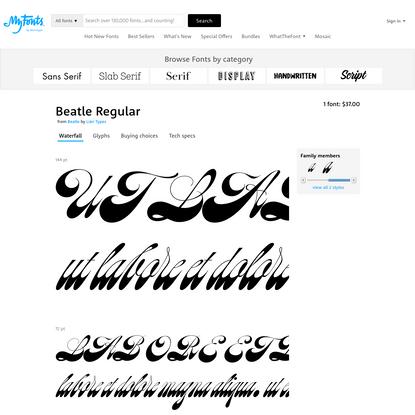 """Beatle - Desktop font """" MyFonts"""