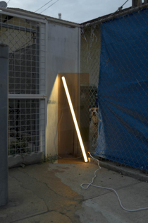 Tyler Swanner, Prototypes