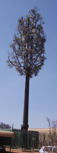 camouflaged_microwave_cell_telephone_tower.jpg
