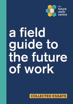 rsa_field-guide-future-work.pdf