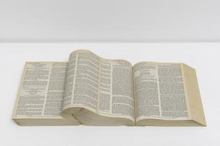 livros-moles_wexner-_2013_odires-mlaszho_livros_3_5_photo_edouard-fraipont.jpg