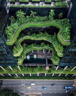 Concrete Jungle - Singapore