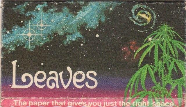 leaves-thumb-640x371.jpg