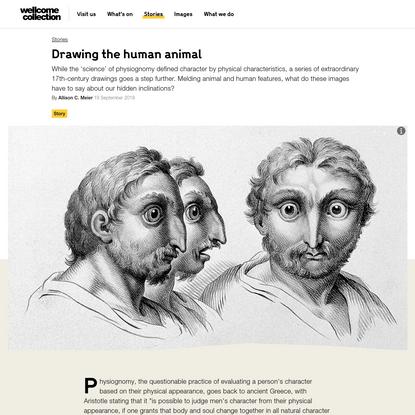 Drawing the human animal