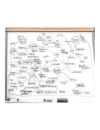 Sakiya Project Ideas Map