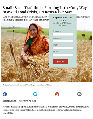 small-scale-traditional-farming-is-the-only-way-to-avoid-food-crisis-un-researcher-says-by-nafeez-a.pdf