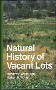 vacant-lots.jpg