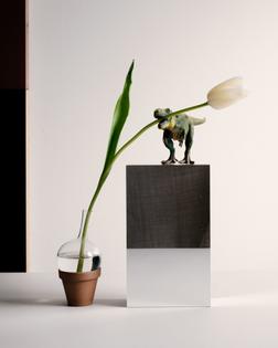 carl-kleiner-2018-february-sweden-stockholm-still-life-flower-tulip-animal-dinosaurus-1536x1920.jpg