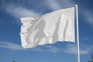 run-it-up-the-flagpole-and-see-if-anyone-salutes-it-day.jpg?1-f=1