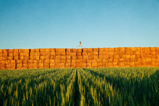 2012-haystacks_grassy-reach_out_im_right_here-web.jpg