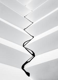 Tim Knowles, Ink on Paper Landscape