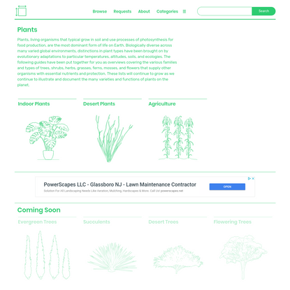 Plants Dimensions & Drawings   Dimensions.Guide