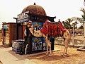 Wiki loves Africa-Camel Model-Egypt-Hagar Mokhtar.jpg