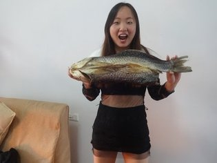 How to dry a fish
