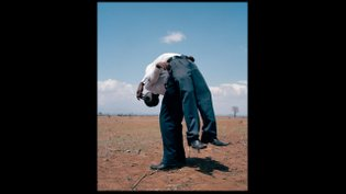 Photographers in Focus: Viviane Sassen - NOWNESS