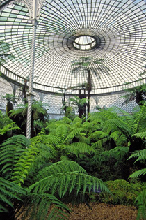 kibble-palace-at-glasgow-botanical-gardens.jpg