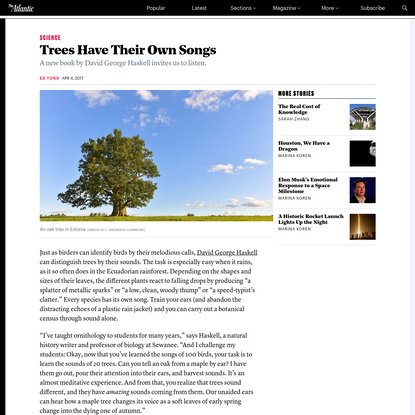Trees Have Their Own Songs
