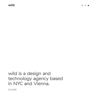 wild | digital branding studio