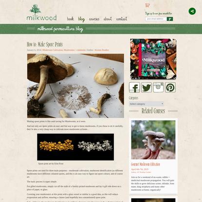 How to: Make Spore Prints - Milkwood
