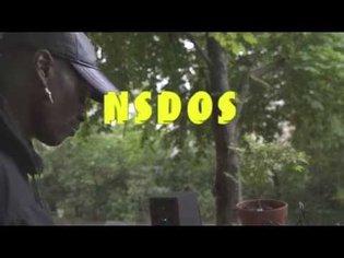 NSDOS - INSEKT