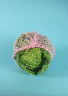 cabbage-hair-lauren-law.jpg