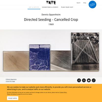'Directed Seeding - Cancelled Crop', Dennis Oppenheim, 1969   Tate