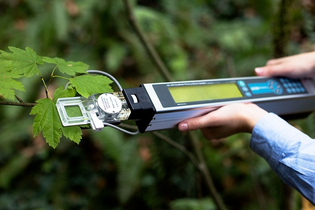 CI-340 Handheld Photosynthesis System