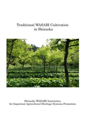 final_wasabi_application.pdf