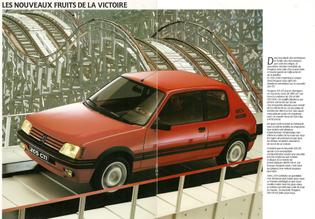 peugeot-205gti1900-1987-b.jpg